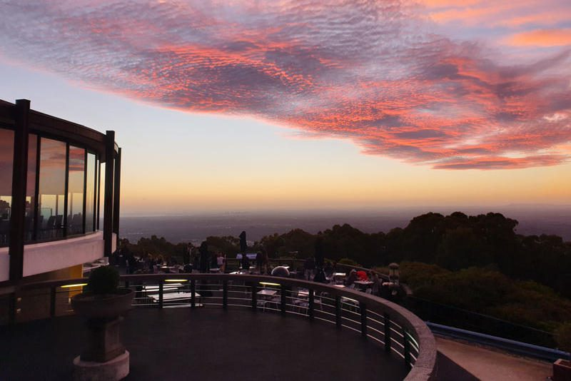 Sky High Mount Dandenong - Things to do in the Yarra Valley