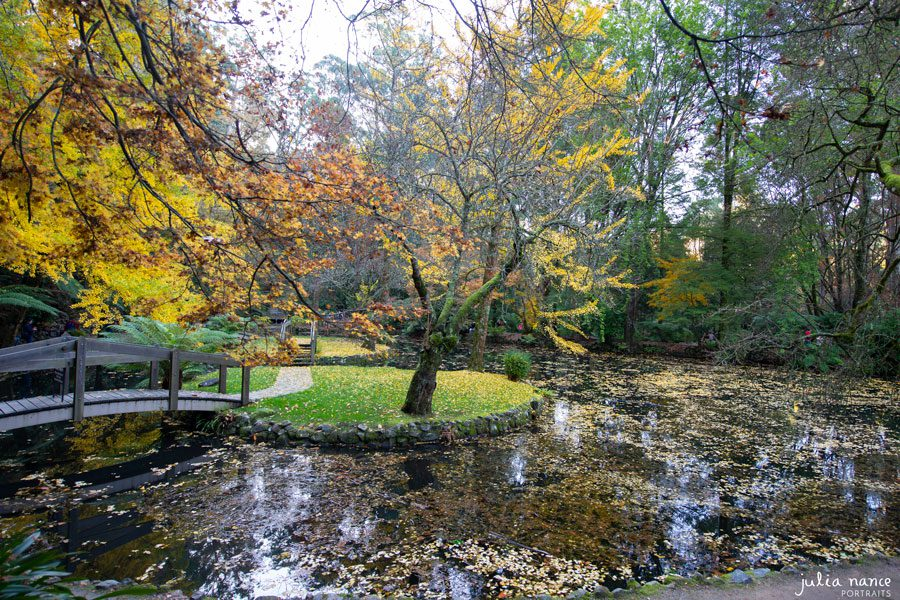 Alfred Nicholas Gardens - Landscape Photography - Things to do in the Yarra Valley